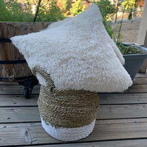 🍋 2 Pottery Barn Sheepskin Pillows